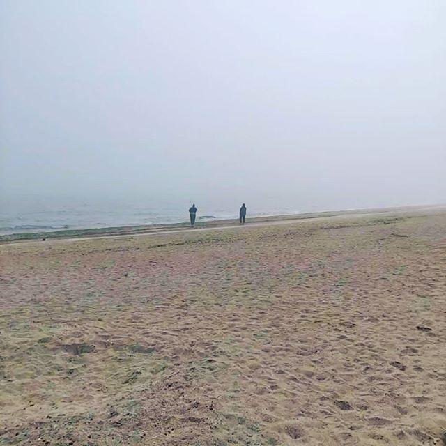 Ищем Ёжика в тумане...